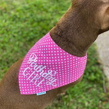 Birthday Girl Dog Bandanna
