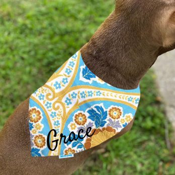 Free Spirit Yellow Blue Pet Dog Bandanna