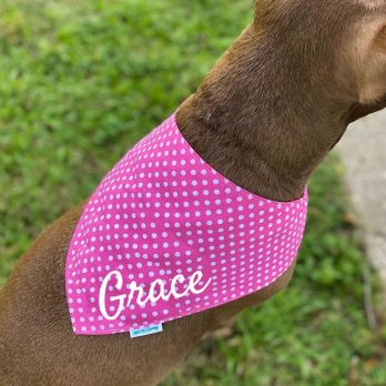 Pink Dots Dog Pet Bandanna