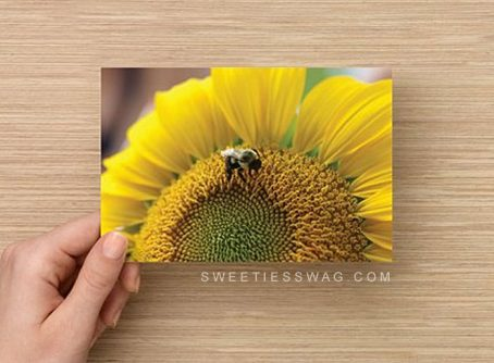 "4 x 6"" Postcards for Entering Mail-in Sweepstakes - Sunflower (Qty. 50)"